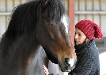 We have worked with Festina Lente in the development of an Equine Assisted Learning Programme(EAL).  Here Róisín Brennan is demonstrating an alternative technique of communicating with Horses as part of an EAL Session